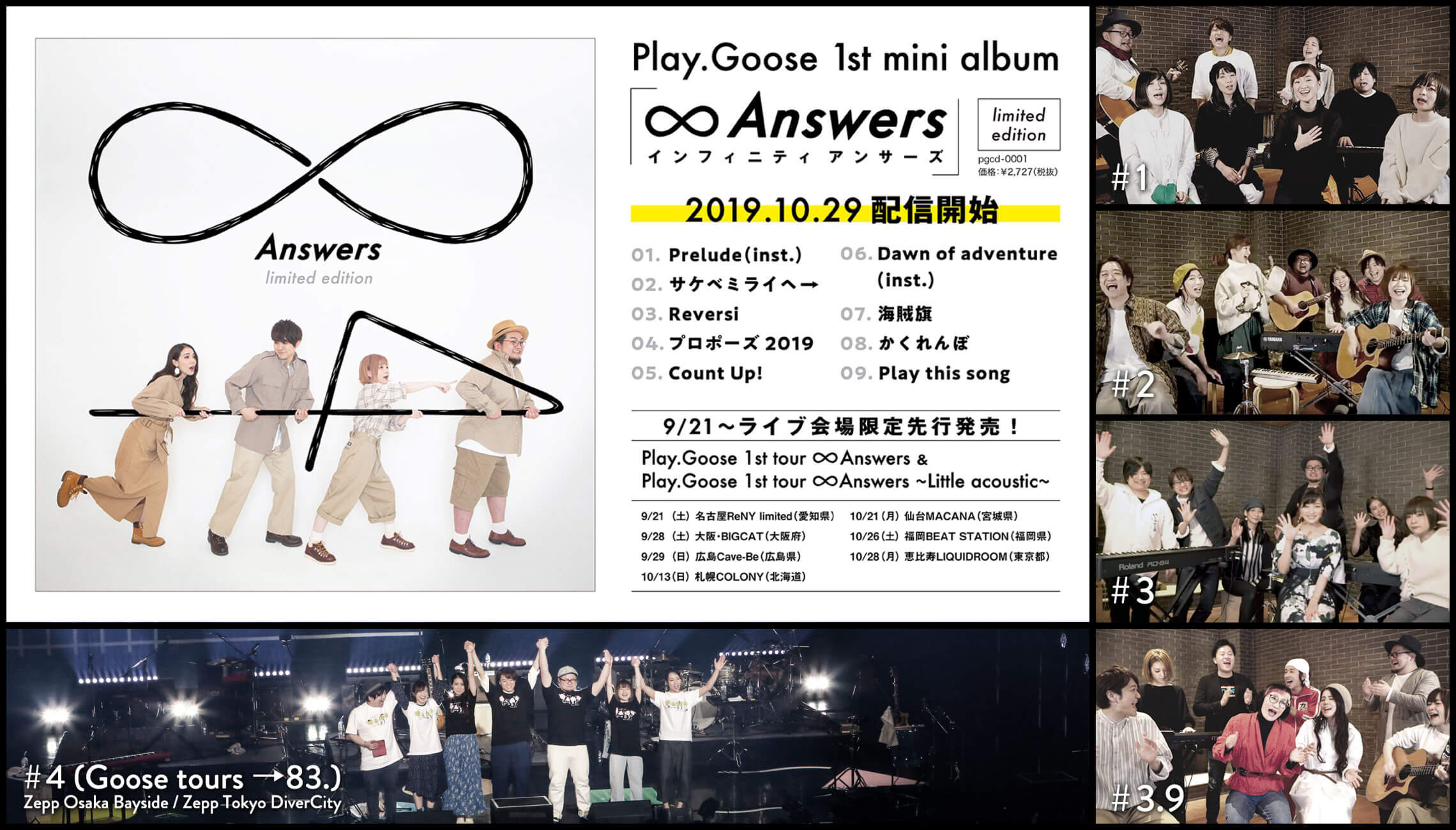 PlayGoose公式ホームページ